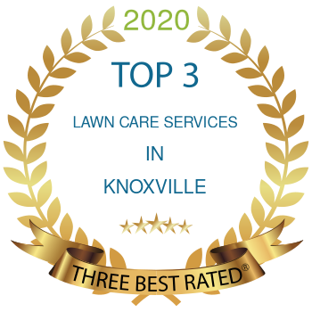 lawn care services knoxville 2020