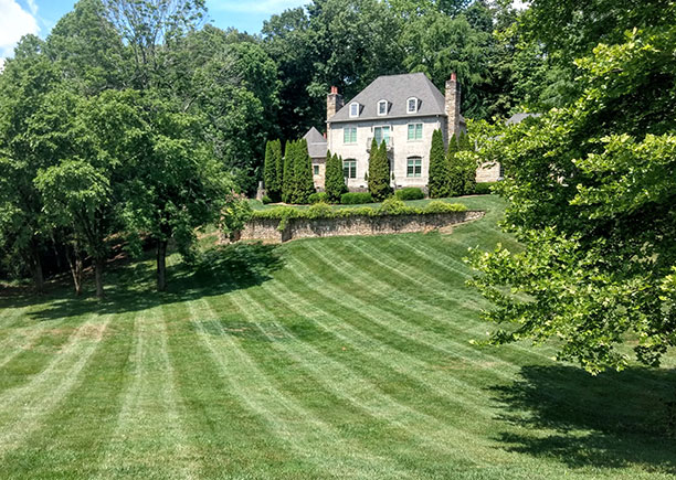 knoxville tn landscaping companies