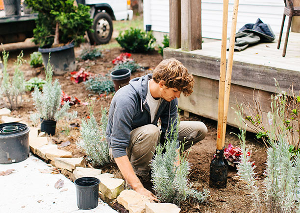 landscaping services knoxville tn