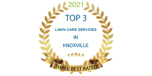 top rated knoxville 2021